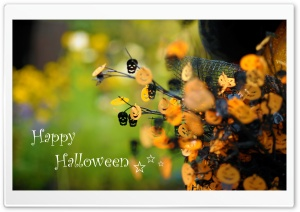 Happy Halloween HD Wide Wallpaper for 4K UHD Widescreen desktop & smartphone