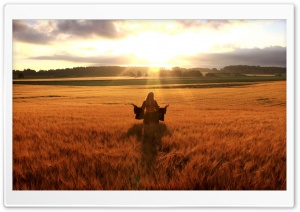 Happy Woman In Golden Wheat Field HD Wide Wallpaper for Widescreen