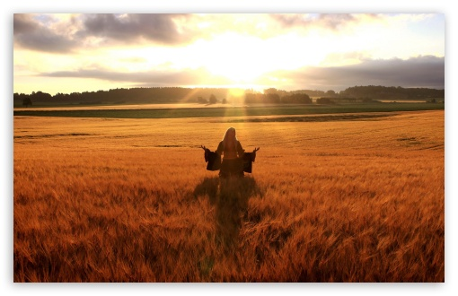 Happy Woman In Golden Wheat Field HD wallpaper for Wide 16:10 5:3 Widescreen WHXGA WQXGA WUXGA WXGA WGA ; HD 16:9 High Definition WQHD QWXGA 1080p 900p 720p QHD nHD ; Standard 4:3 5:4 3:2 Fullscreen UXGA XGA SVGA QSXGA SXGA DVGA HVGA HQVGA devices ( Apple PowerBook G4 iPhone 4 3G 3GS iPod Touch ) ; Tablet 1:1 ; iPad 1/2/Mini ; Mobile 4:3 5:3 3:2 16:9 5:4 - UXGA XGA SVGA WGA DVGA HVGA HQVGA devices ( Apple PowerBook G4 iPhone 4 3G 3GS iPod Touch ) WQHD QWXGA 1080p 900p 720p QHD nHD QSXGA SXGA ;