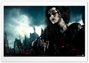 Harry Potter And The Deathly Hallows - Bellatrix HD Wide Wallpaper for Widescreen