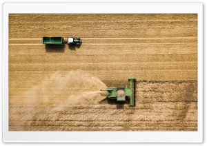 Harvest HD Wide Wallpaper for 4K UHD Widescreen desktop & smartphone