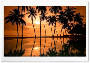 Hawaiian Beach Sunset Reflection HD Wide Wallpaper for Widescreen