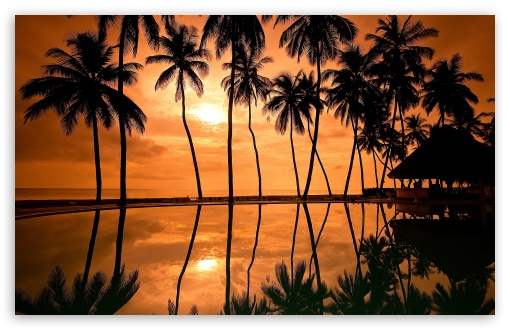 Hawaiian Beach Sunset Reflection Ultra Hd Desktop Background Wallpaper For 4k Uhd Tv Tablet Smartphone