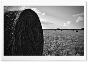 Hay Bail HD Wide Wallpaper for Widescreen