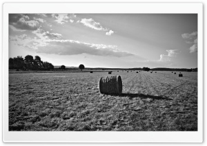 Hay Bails II HD Wide Wallpaper for Widescreen