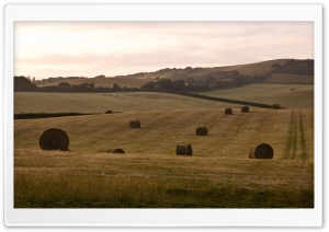 Hay Bales, Isle Of Wight, England HD Wide Wallpaper for Widescreen