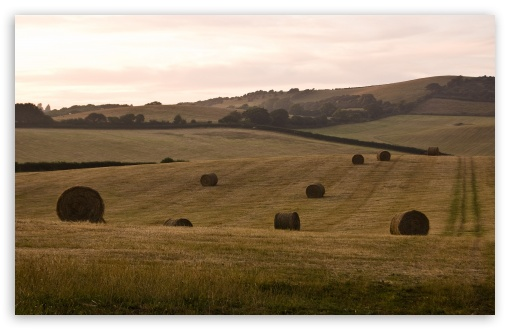 Hay Bales, Isle Of Wight, England HD wallpaper for Wide 16:10 5:3 Widescreen WHXGA WQXGA WUXGA WXGA WGA ; HD 16:9 High Definition WQHD QWXGA 1080p 900p 720p QHD nHD ; Standard 4:3 5:4 3:2 Fullscreen UXGA XGA SVGA QSXGA SXGA DVGA HVGA HQVGA devices ( Apple PowerBook G4 iPhone 4 3G 3GS iPod Touch ) ; Tablet 1:1 ; iPad 1/2/Mini ; Mobile 4:3 5:3 3:2 16:9 5:4 - UXGA XGA SVGA WGA DVGA HVGA HQVGA devices ( Apple PowerBook G4 iPhone 4 3G 3GS iPod Touch ) WQHD QWXGA 1080p 900p 720p QHD nHD QSXGA SXGA ;