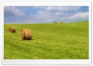 Hay Bales On Green Grass HD Wide Wallpaper for Widescreen