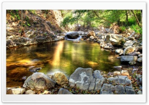 HDR Forest Creek HD Wide Wallpaper for 4K UHD Widescreen desktop & smartphone