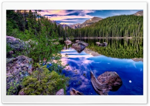 HDR Forest Reflection HD Wide Wallpaper for Widescreen