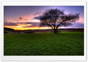 HDR Landscape HD Wide Wallpaper for Widescreen