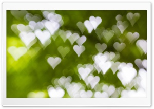 Heart Bokeh HD Wide Wallpaper for Widescreen
