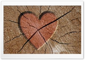 Heart Engraved Log HD Wide Wallpaper for Widescreen