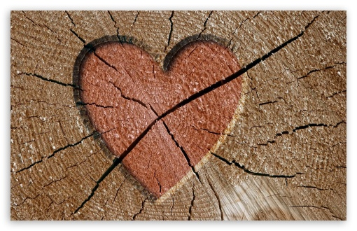 Heart Engraved Log ❤ 4K UHD Wallpaper for Wide 16:10 5:3 Widescreen WHXGA WQXGA WUXGA WXGA WGA ; 4K UHD 16:9 Ultra High Definition 2160p 1440p 1080p 900p 720p ; Standard 4:3 5:4 3:2 Fullscreen UXGA XGA SVGA QSXGA SXGA DVGA HVGA HQVGA ( Apple PowerBook G4 iPhone 4 3G 3GS iPod Touch ) ; Tablet 1:1 ; iPad 1/2/Mini ; Mobile 4:3 5:3 3:2 16:9 5:4 - UXGA XGA SVGA WGA DVGA HVGA HQVGA ( Apple PowerBook G4 iPhone 4 3G 3GS iPod Touch ) 2160p 1440p 1080p 900p 720p QSXGA SXGA ;
