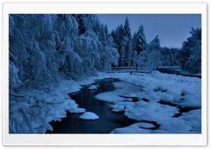 Heavy Snow HD Wide Wallpaper for Widescreen