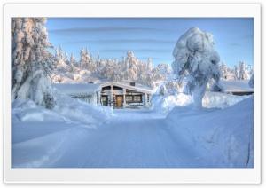 Heavy Snow HDR Ultra HD Wallpaper for 4K UHD Widescreen desktop, tablet & smartphone