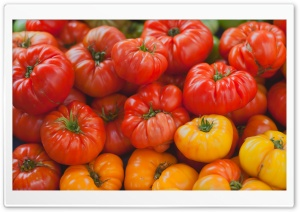 Heirloom Tomatoes HD Wide Wallpaper for Widescreen