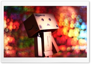 Hi, Bokeh! Can We Be Friends HD Wide Wallpaper for Widescreen