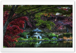 Hidden Pond Lantern HD Wide Wallpaper for Widescreen