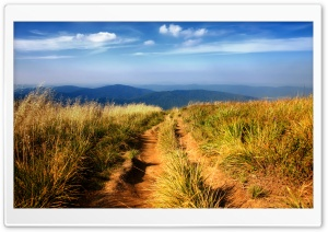 Hiking Path HD Wide Wallpaper for Widescreen
