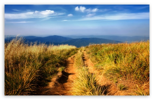 Hiking Path ❤ 4K UHD Wallpaper for Wide 16:10 5:3 Widescreen WHXGA WQXGA WUXGA WXGA WGA ; 4K UHD 16:9 Ultra High Definition 2160p 1440p 1080p 900p 720p ; Standard 4:3 5:4 3:2 Fullscreen UXGA XGA SVGA QSXGA SXGA DVGA HVGA HQVGA ( Apple PowerBook G4 iPhone 4 3G 3GS iPod Touch ) ; Tablet 1:1 ; iPad 1/2/Mini ; Mobile 4:3 5:3 3:2 16:9 5:4 - UXGA XGA SVGA WGA DVGA HVGA HQVGA ( Apple PowerBook G4 iPhone 4 3G 3GS iPod Touch ) 2160p 1440p 1080p 900p 720p QSXGA SXGA ;