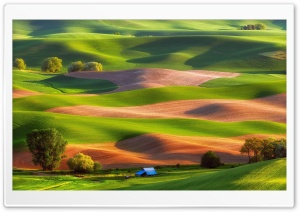Hills, Steptoe Butte State Park, USA HD Wide Wallpaper for Widescreen