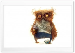 Hobo Owl HD Wide Wallpaper for Widescreen
