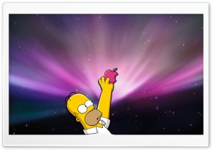 Homer Simpson Donut HD Wide Wallpaper for Widescreen