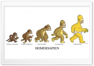 Homersapien HD Wide Wallpaper for Widescreen