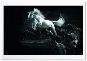 Horse and Wolves Ultra HD Wallpaper for 4K UHD Widescreen desktop, tablet & smartphone