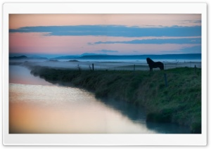 Horse, Landscape HD Wide Wallpaper for Widescreen