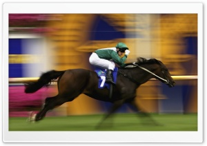 Horse Racing HD Wide Wallpaper for Widescreen