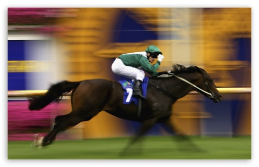 Horse Racing HD wallpaper for Wide 16:10 5:3 Widescreen WHXGA WQXGA WUXGA WXGA WGA ; HD 16:9 High Definition WQHD QWXGA 1080p 900p 720p QHD nHD ; Standard 4:3 5:4 3:2 Fullscreen UXGA XGA SVGA QSXGA SXGA DVGA HVGA HQVGA devices ( Apple PowerBook G4 iPhone 4 3G 3GS iPod Touch ) ; iPad 1/2/Mini ; Mobile 4:3 5:3 3:2 16:9 5:4 - UXGA XGA SVGA WGA DVGA HVGA HQVGA devices ( Apple PowerBook G4 iPhone 4 3G 3GS iPod Touch ) WQHD QWXGA 1080p 900p 720p QHD nHD QSXGA SXGA ;