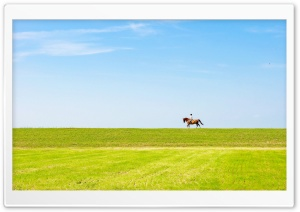 Horse Riding HD Wide Wallpaper for Widescreen