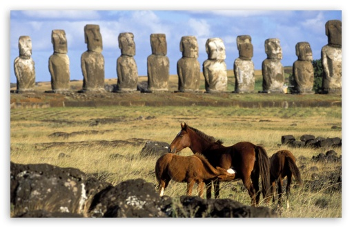 Horses Of Easter Island Chile HD wallpaper for Wide 16:10 5:3 Widescreen WHXGA WQXGA WUXGA WXGA WGA ; HD 16:9 High Definition WQHD QWXGA 1080p 900p 720p QHD nHD ; Standard 4:3 5:4 3:2 Fullscreen UXGA XGA SVGA QSXGA SXGA DVGA HVGA HQVGA devices ( Apple PowerBook G4 iPhone 4 3G 3GS iPod Touch ) ; Tablet 1:1 ; iPad 1/2/Mini ; Mobile 4:3 5:3 3:2 16:9 5:4 - UXGA XGA SVGA WGA DVGA HVGA HQVGA devices ( Apple PowerBook G4 iPhone 4 3G 3GS iPod Touch ) WQHD QWXGA 1080p 900p 720p QHD nHD QSXGA SXGA ;