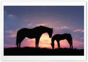 Horses Sunset Silhouette Ultra HD Wallpaper for 4K UHD Widescreen desktop, tablet & smartphone