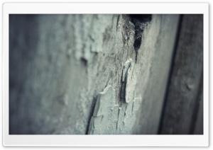 Hospital HD Wide Wallpaper for Widescreen
