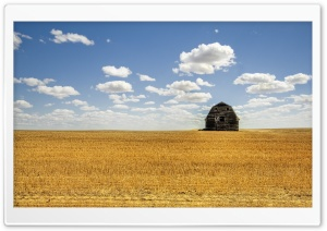 Hut In Open Field HD Wide Wallpaper for Widescreen