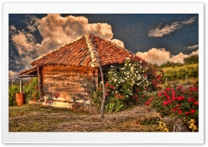 Hut With Roses HD Wide Wallpaper for Widescreen