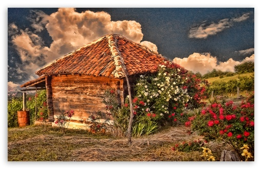Hut With Roses HD wallpaper for Wide 16:10 5:3 Widescreen WHXGA WQXGA WUXGA WXGA WGA ; HD 16:9 High Definition WQHD QWXGA 1080p 900p 720p QHD nHD ; Standard 4:3 5:4 3:2 Fullscreen UXGA XGA SVGA QSXGA SXGA DVGA HVGA HQVGA devices ( Apple PowerBook G4 iPhone 4 3G 3GS iPod Touch ) ; Tablet 1:1 ; iPad 1/2/Mini ; Mobile 4:3 5:3 3:2 16:9 5:4 - UXGA XGA SVGA WGA DVGA HVGA HQVGA devices ( Apple PowerBook G4 iPhone 4 3G 3GS iPod Touch ) WQHD QWXGA 1080p 900p 720p QHD nHD QSXGA SXGA ;