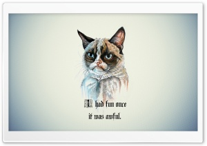 I Had Fun Once It Was Awful Cat HD Wide Wallpaper for 4K UHD Widescreen desktop & smartphone