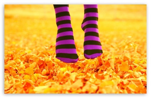 I Love October HD wallpaper for Wide 16:10 5:3 Widescreen WHXGA WQXGA WUXGA WXGA WGA ; HD 16:9 High Definition WQHD QWXGA 1080p 900p 720p QHD nHD ; UHD 16:9 WQHD QWXGA 1080p 900p 720p QHD nHD ; Standard 4:3 5:4 3:2 Fullscreen UXGA XGA SVGA QSXGA SXGA DVGA HVGA HQVGA devices ( Apple PowerBook G4 iPhone 4 3G 3GS iPod Touch ) ; Tablet 1:1 ; iPad 1/2/Mini ; Mobile 4:3 5:3 3:2 16:9 5:4 - UXGA XGA SVGA WGA DVGA HVGA HQVGA devices ( Apple PowerBook G4 iPhone 4 3G 3GS iPod Touch ) WQHD QWXGA 1080p 900p 720p QHD nHD QSXGA SXGA ;