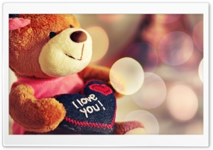 I love You Teddy Bear HD Wide Wallpaper for 4K UHD Widescreen desktop & smartphone