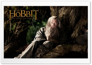 Ian Mckellen as Gandalf in The Hobbit An Unexpected Journey HD Wide Wallpaper for 4K UHD Widescreen desktop & smartphone
