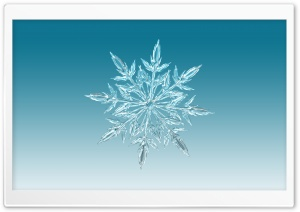 Ice Crystal HD Wide Wallpaper for Widescreen