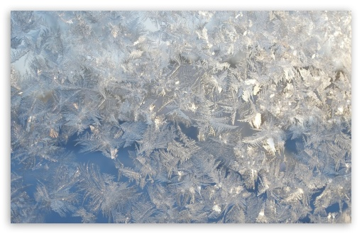 Ice Flowers On A Window ❤ 4K UHD Wallpaper for Wide 16:10 5:3 Widescreen WHXGA WQXGA WUXGA WXGA WGA ; 4K UHD 16:9 Ultra High Definition 2160p 1440p 1080p 900p 720p ; UHD 16:9 2160p 1440p 1080p 900p 720p ; Standard 4:3 5:4 3:2 Fullscreen UXGA XGA SVGA QSXGA SXGA DVGA HVGA HQVGA ( Apple PowerBook G4 iPhone 4 3G 3GS iPod Touch ) ; Tablet 1:1 ; iPad 1/2/Mini ; Mobile 4:3 5:3 3:2 16:9 5:4 - UXGA XGA SVGA WGA DVGA HVGA HQVGA ( Apple PowerBook G4 iPhone 4 3G 3GS iPod Touch ) 2160p 1440p 1080p 900p 720p QSXGA SXGA ;