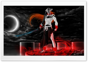 Ichigo Vasto Lorde (Bleach) HD Wide Wallpaper for 4K UHD Widescreen desktop & smartphone