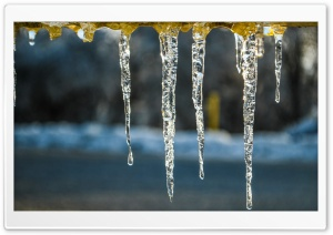 Icicles On A Cold Afternoon HD Wide Wallpaper for Widescreen