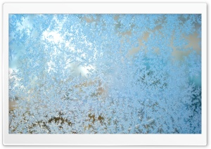 Icy Window HD Wide Wallpaper for Widescreen