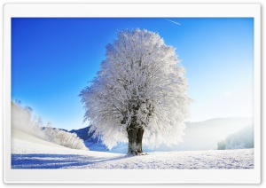 Idyllic Landscape, Winter HD Wide Wallpaper for Widescreen